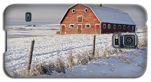 Red Barn In Winter Coat Galaxy S5 Case