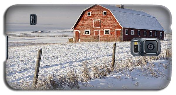 Red Barn In Winter Coat Galaxy S5 Case