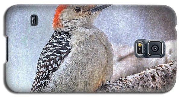 Red-bellied Woodpecker Galaxy S5 Case by Patti Deters