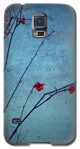 Red Berries Blue Sky Galaxy S5 Case