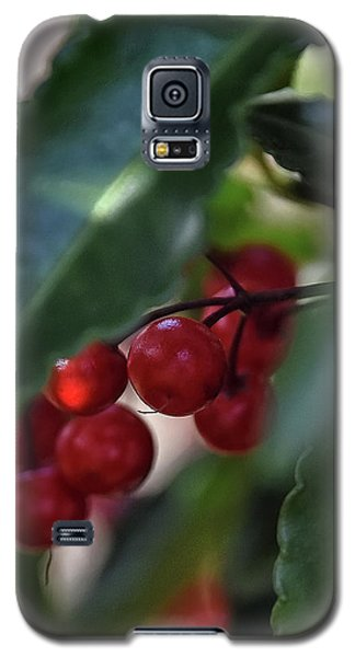 Red Berry Galaxy S5 Case