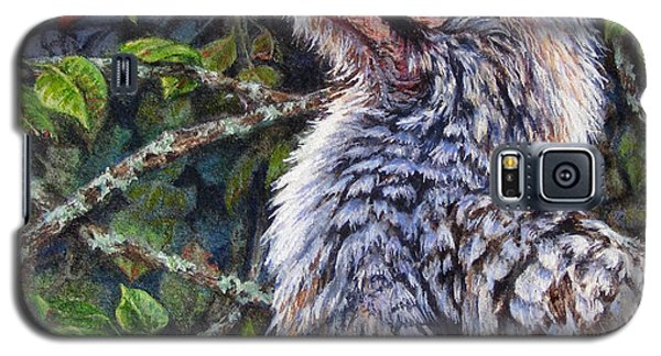 Red Billed Hornbill Galaxy S5 Case