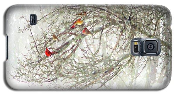 Red Bird Convention Galaxy S5 Case