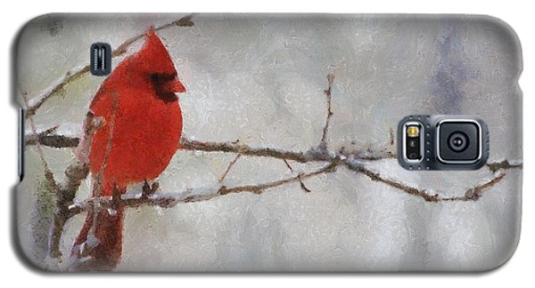 Red Bird Of Winter Galaxy S5 Case