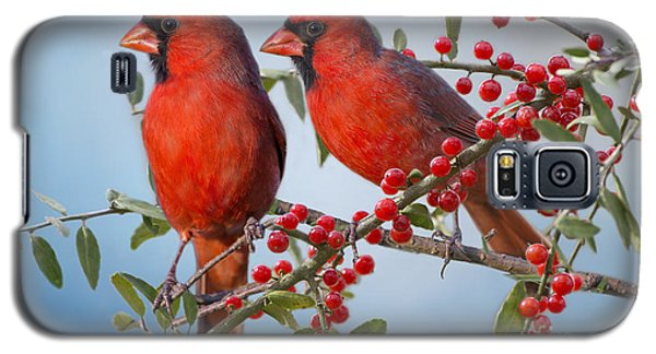 Red Birds In Red Berries Galaxy S5 Case by Bonnie Barry