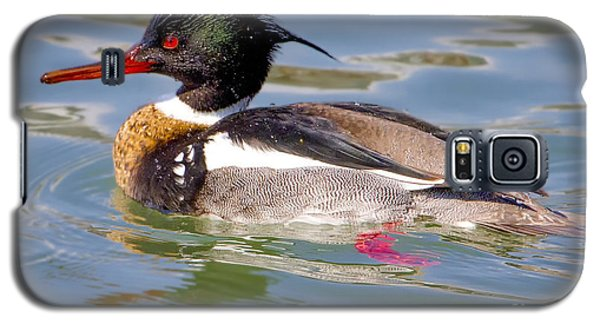 Red-breasted Merganser Galaxy S5 Case