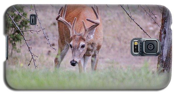 Red Bucks 6 Galaxy S5 Case