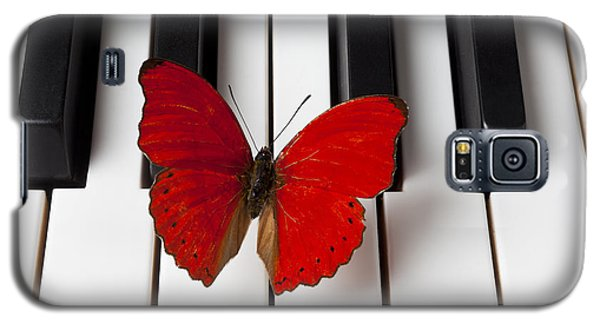 Butterfly Galaxy S5 Case - Red Butterfly On Piano Keys by Garry Gay