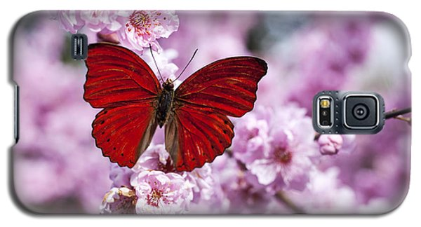 Red Butterfly On Plum  Blossom Branch Galaxy S5 Case