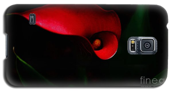 Red Calla Lilly Galaxy S5 Case