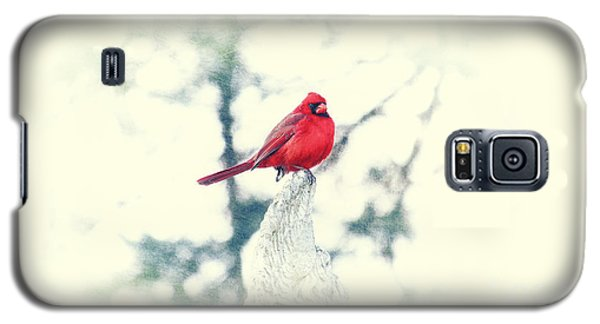 Red Cardinal On Angel Wing Galaxy S5 Case by Charline Xia