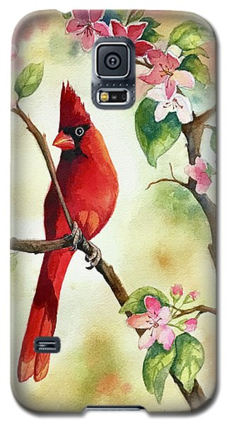 Red Cardinal And Blossoms Galaxy S5 Case
