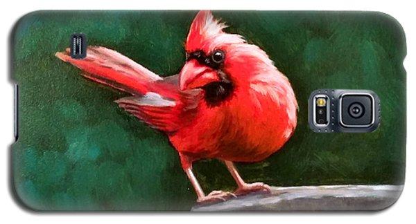 Red Cardinal Galaxy S5 Case
