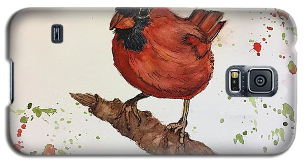 Red Cardinal Galaxy S5 Case by Lucia Grilletto