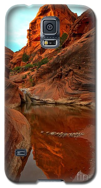 Red Cliffs Reflections Galaxy S5 Case