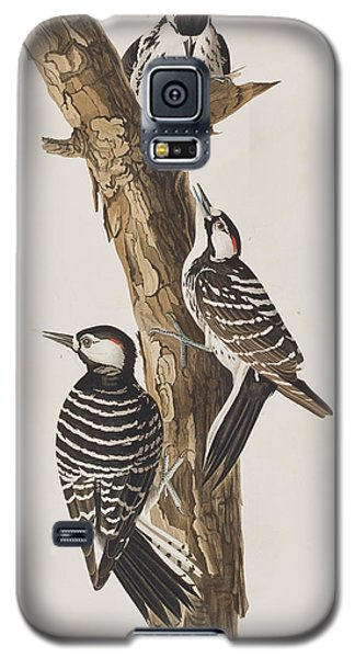 Red-cockaded Woodpecker Galaxy S5 Case by John James Audubon