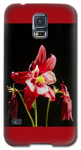 Red Columbine Flower Galaxy S5 Case