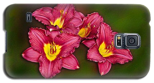 Red Columbine Hybrid Galaxy S5 Case by John Haldane