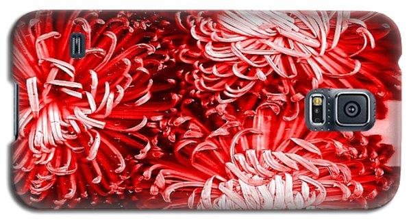 Red Crysanthiam Galaxy S5 Case by Carolyn Repka