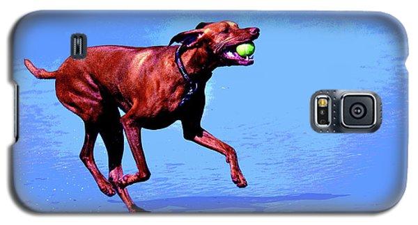 Red Dog Running Galaxy S5 Case