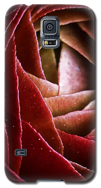 Red Dragon Galaxy S5 Case