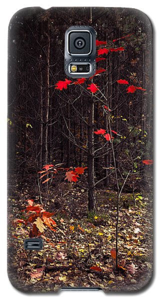 Red Drops Galaxy S5 Case