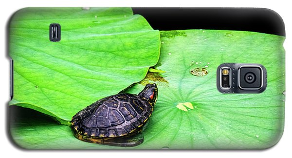Red-eared Slider Galaxy S5 Case