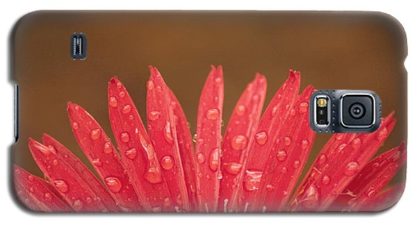 Red Flower 1 Of 2 Galaxy S5 Case