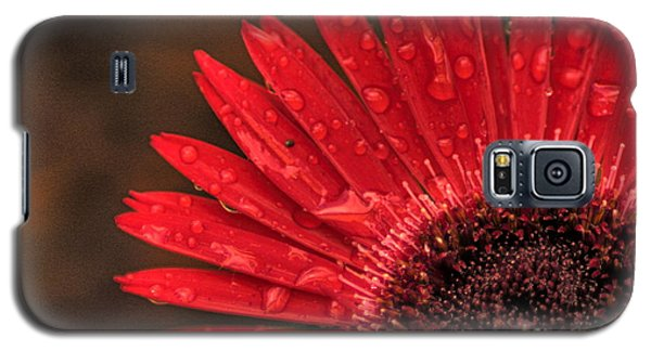 Red Flower 2 Of 2 Galaxy S5 Case