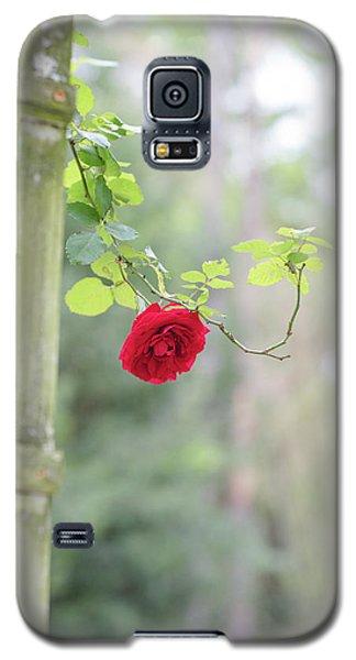 Red Flower Garden Galaxy S5 Case