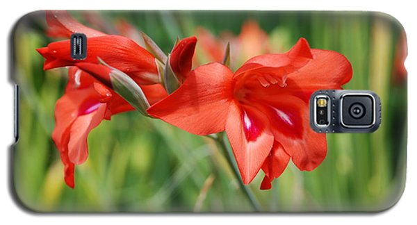 Red Flower Galaxy S5 Case by Jan Daniels