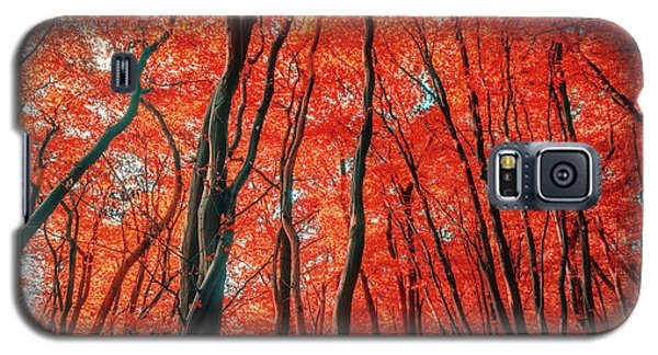 Red Forest Of Sunlight Galaxy S5 Case