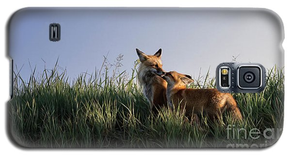 Red Fox Morning Galaxy S5 Case