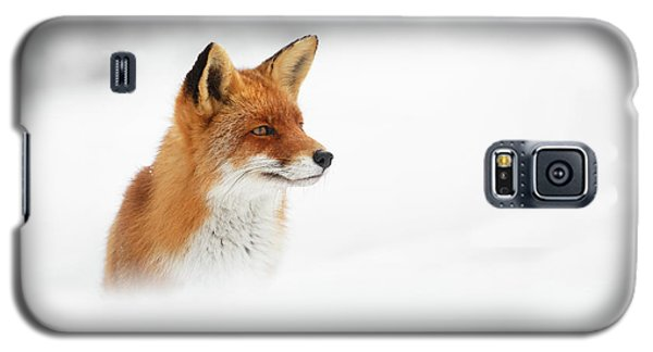 Red Fox Out Of The Blue Galaxy S5 Case
