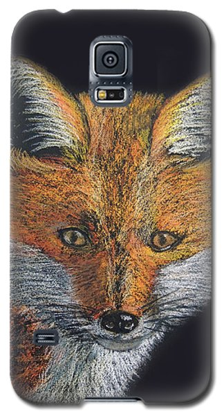 Red Fox Portrait Galaxy S5 Case