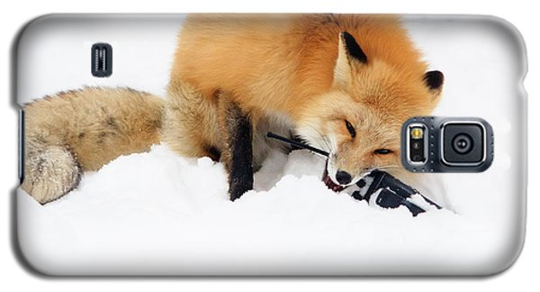 Red Fox To Base Galaxy S5 Case