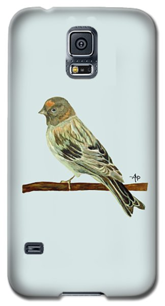 Red-fronted Serin Galaxy S5 Case