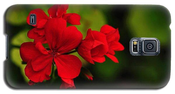 Red Geranium Galaxy S5 Case