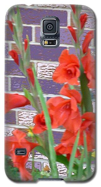 Red Gladiolas Galaxy S5 Case