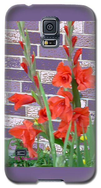 Red Gladiolas Galaxy S5 Case