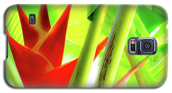 Red Heliconia Galaxy S5 Case