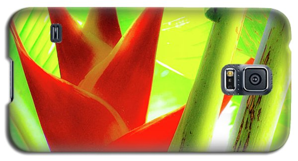 Red Heliconia Plant Galaxy S5 Case