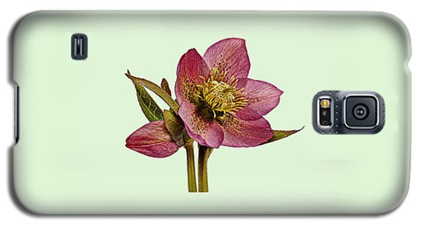 Red Hellebore Green Background Galaxy S5 Case by Paul Gulliver