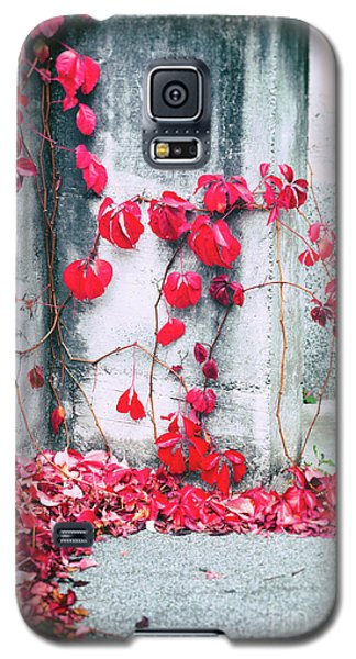 Galaxy S5 Case featuring the photograph Red Ivy Leaves by Silvia Ganora
