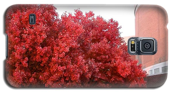 Red Galaxy S5 Case by Joseph Yarbrough