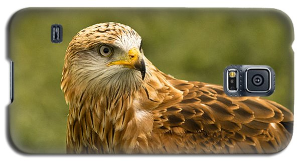 Galaxy S5 Case featuring the photograph Red Kite by Scott Carruthers