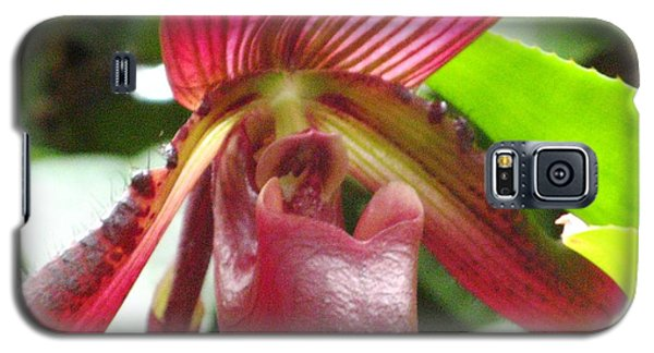 Red Lady Slipper Orchid  Galaxy S5 Case