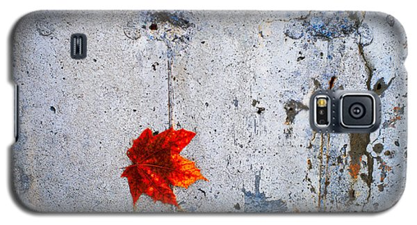 Red Leaf Galaxy S5 Case