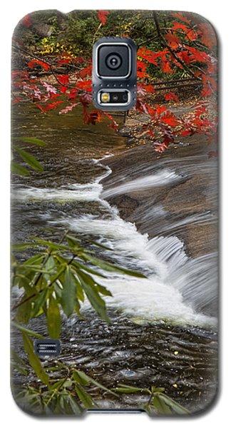 Red Leaf Falls Galaxy S5 Case