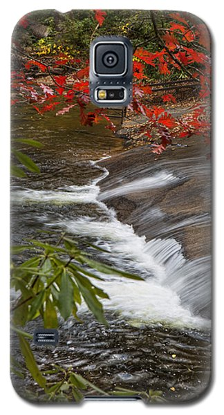 Red Leaf Falls Galaxy S5 Case